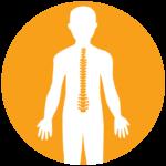 kidz-spine-1